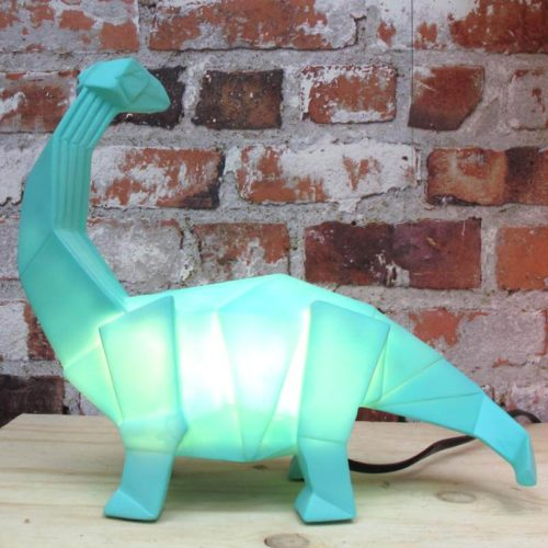 Gifts for Dinosaur Fans