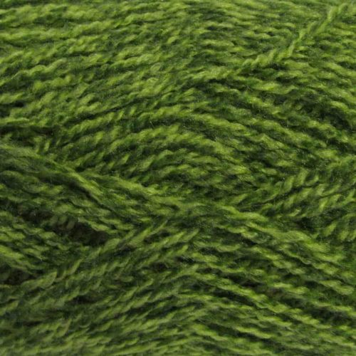 Stylecraft Extra Special DK Greengage 1124