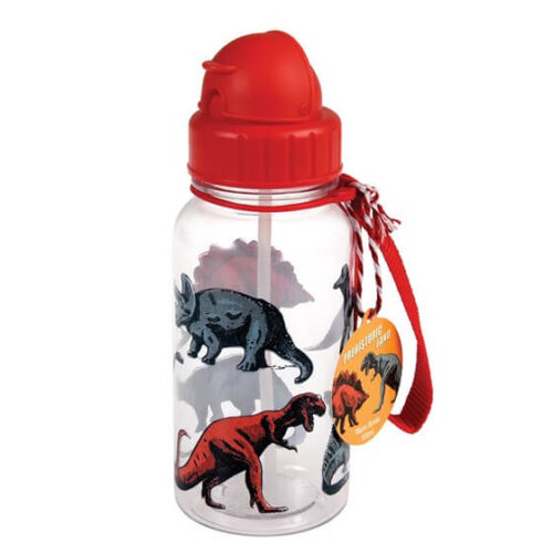 Prehistoric Land Kids Water Bottle