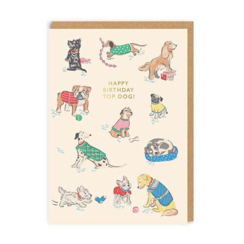 Cath Kidston Happy Birthday Top Dog Greeting Card